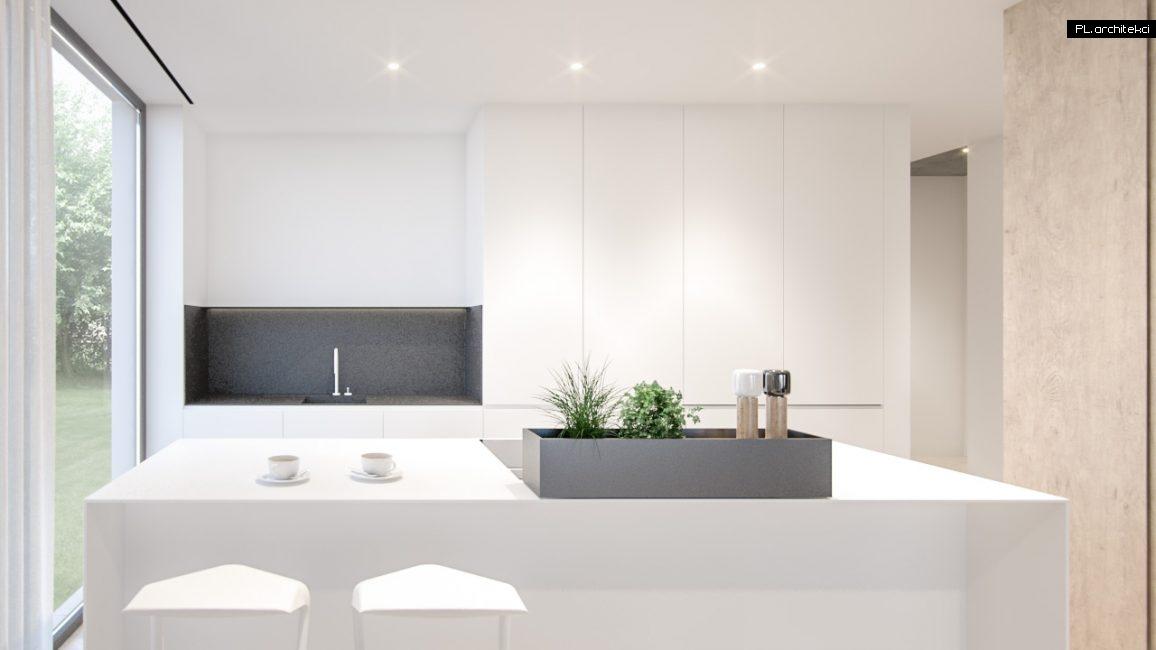 Nowoczesne wnętrze apartamentu: kuchnia | Poznań